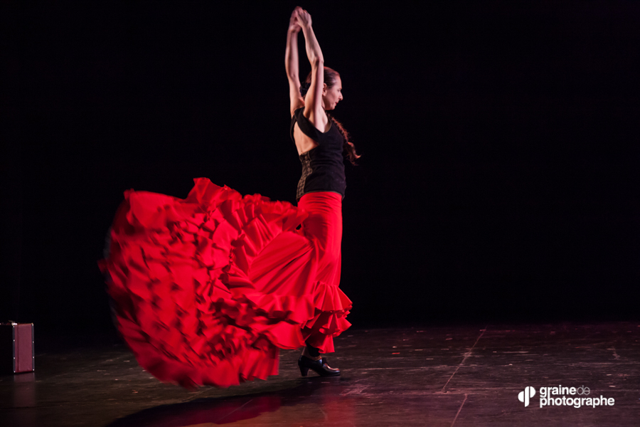 Photo de Danse - Flamenco